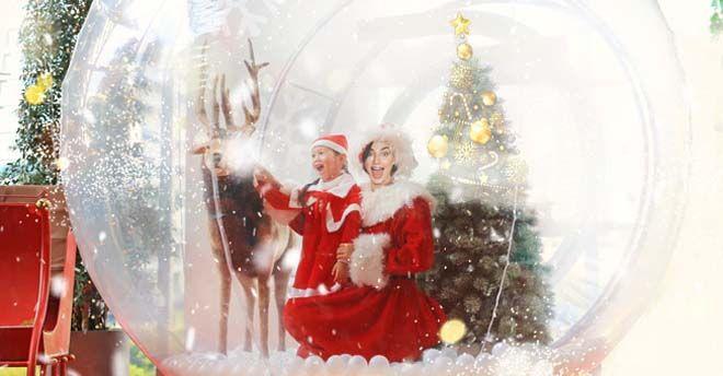 Foto Con La Neve Di Natale.Con La Neve E Tra Le Renne A Palermo La Foto Ricordo Per Natale E Dentro La Palla Snow Globe