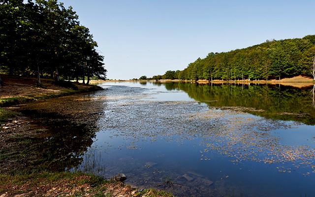 Acqua dolce i cinque laghi e fiumi pi belli della sicilia - Fiumi dove fare il bagno toscana ...