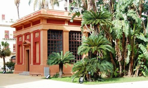 Profumi e colori il giardino siciliano di daniela romano