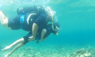You Dive Capo Gallo: la start up che tutela la riserva | Balarm.it